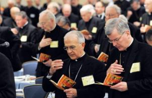 "Is this gathering of U.S. Catholic Bishops the assembling of ""the church""?"
