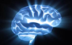 Brain_1881572c